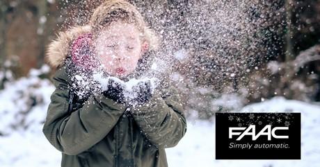 FAAC Christmas